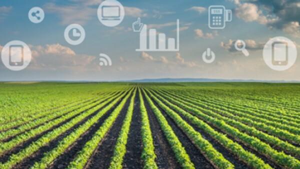IoT_agroindustria