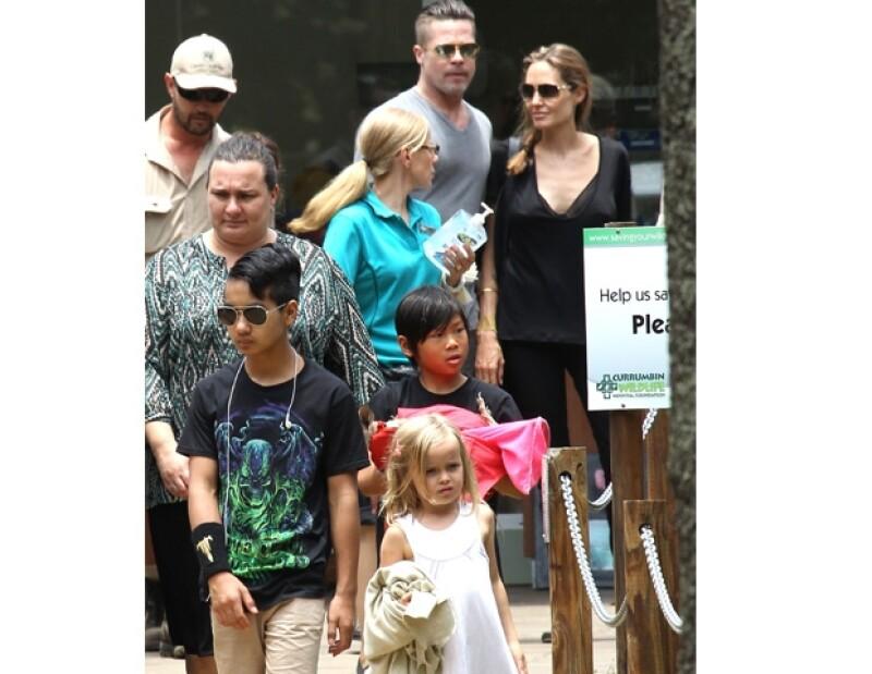 Angelina Jolie y Brad Pitt llevaron a sus seis hijos a un santuario animal en Australia, en donde quedaron enamorados de un canguro bebé huérfano.