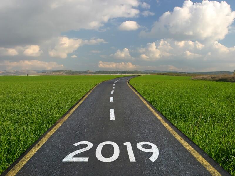 2019 perspectivas