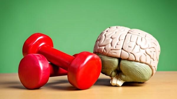 ejercicio inteligencia