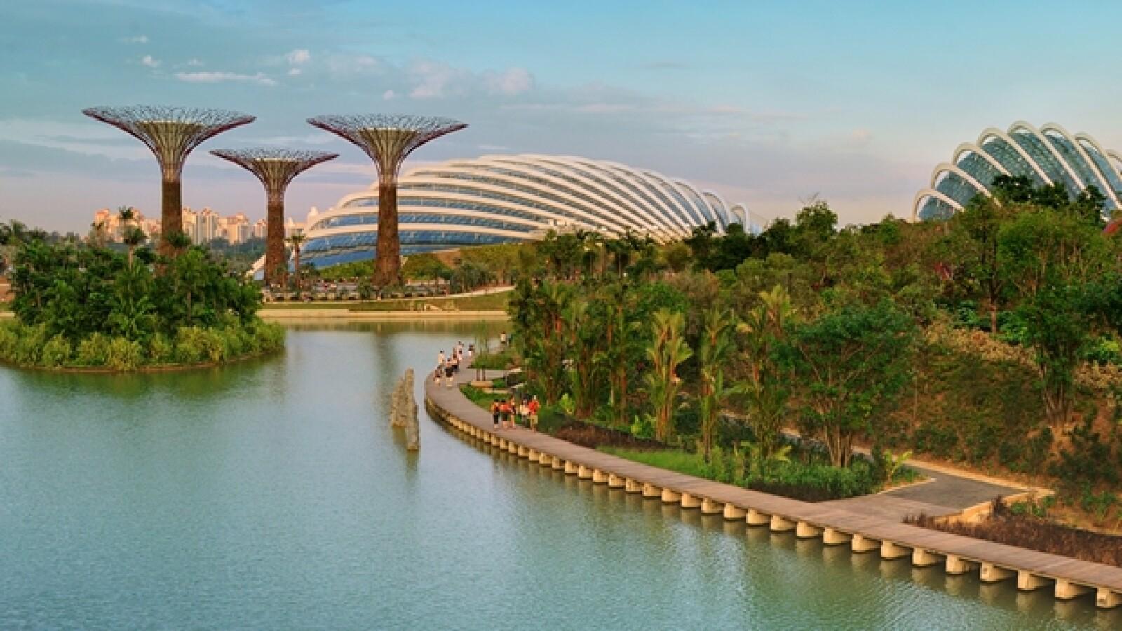 singapur super arboles 02