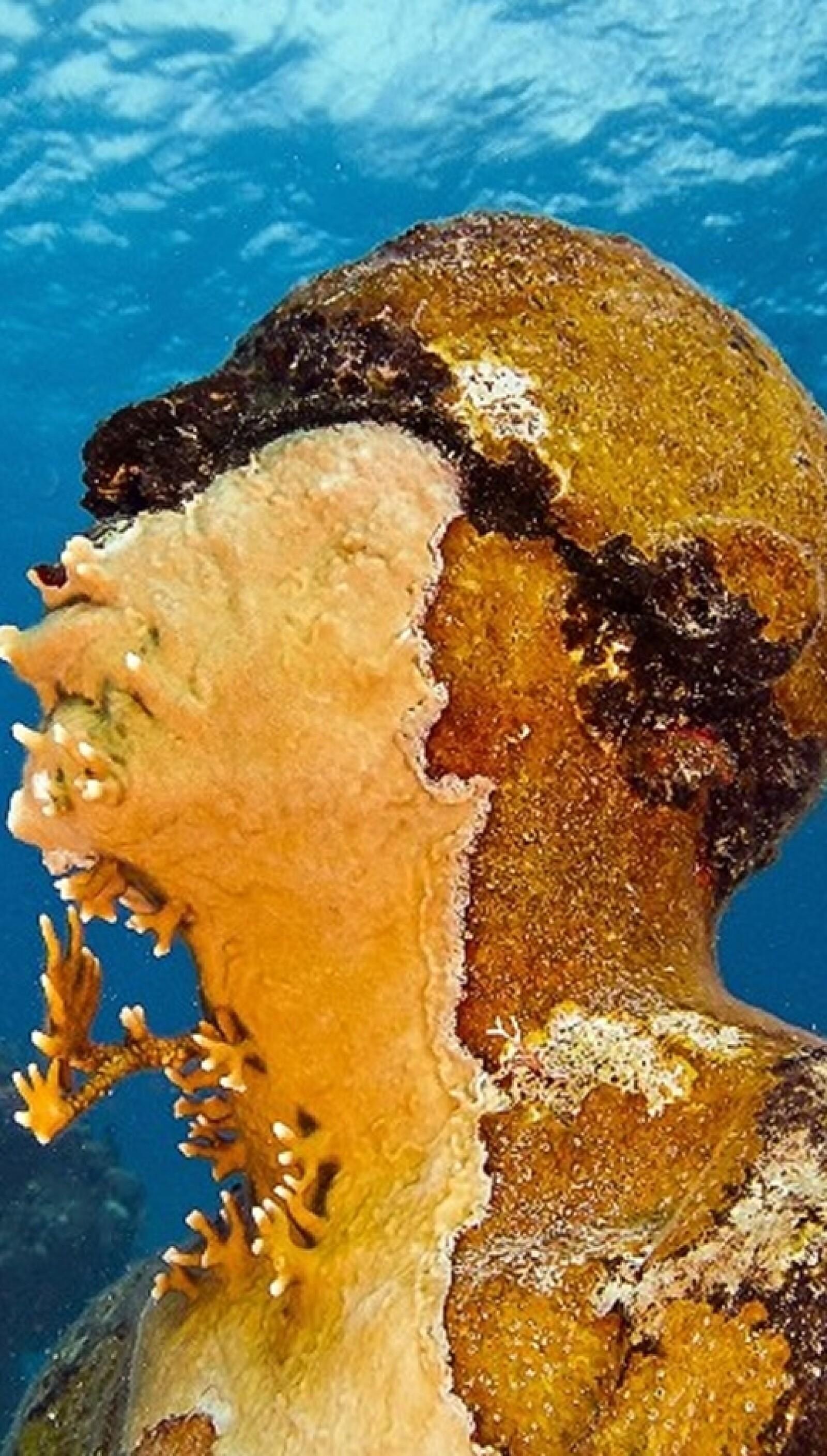 El escultor no está preocupado con la perspectiva de que los corales cubran eventualmente sus creaciones al punto de que la forma original ya no sea reconocible