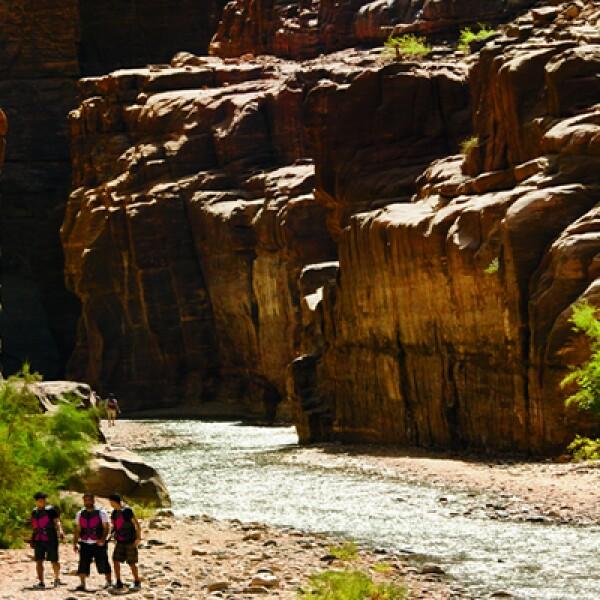 8)Por el sendero que lleva a la reserva natural de Wadi Arugot se ven impresionantes cañones, piscinas naturales, además de la particular flora de la localidad, como acacias y juncos gigantes.