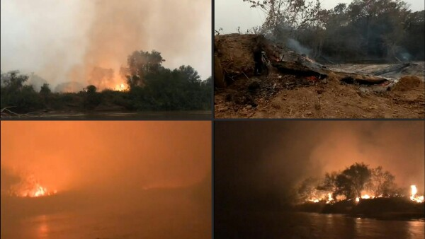 El Pantanal de Brasil, el paraíso verde que está siendo devorado por las llamas