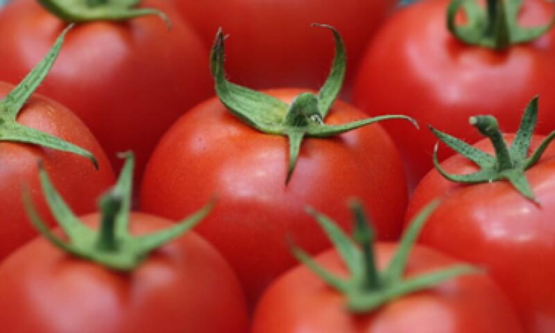 En 2011 se exportaron 1,800 mdd de tomate mexicano en Estados Unidos. (Foto: Getty Images)