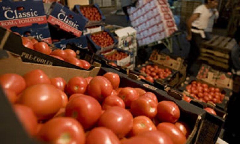 El tomate es el principal producto agropecuario que México exporta a Estados Unidos. (Foto: AP)