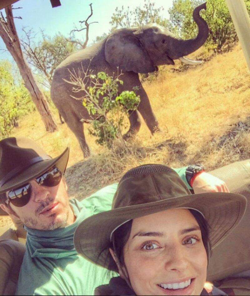 Sus primeras selfies como casados, no podían tener mejor fondo.
