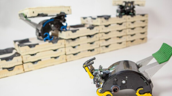 Termitas Robots