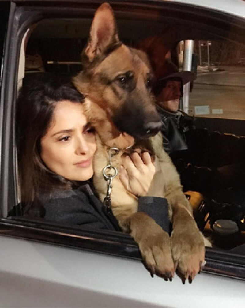 Después de la muerte de su perro Mozart y que la policía aclarara que el culpable no enfrentaría cargos, la actriz da gracias a sus seguidores en Instagram.