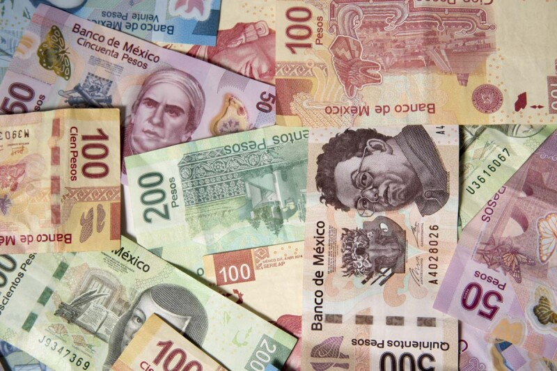 dinero - ingresos - empleo - ingreso laboral