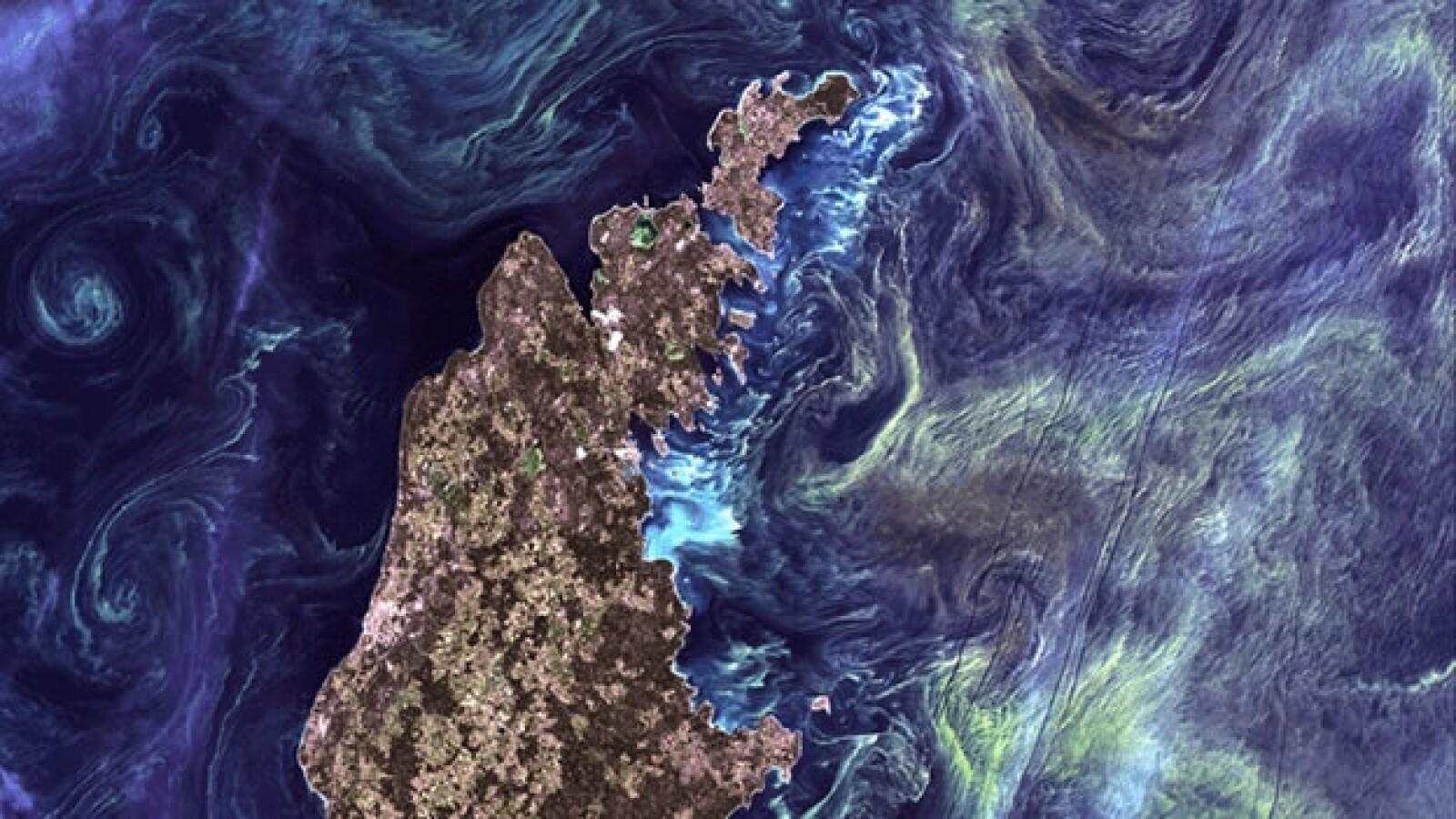 Mar baltico, oceano, plancton, espacio