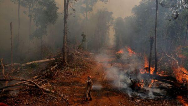 amazonia-incendio-brasil