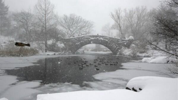 Central Park, en NY,  luce totalmente blanco con el paso de la tormenta de invierno este fin de semana