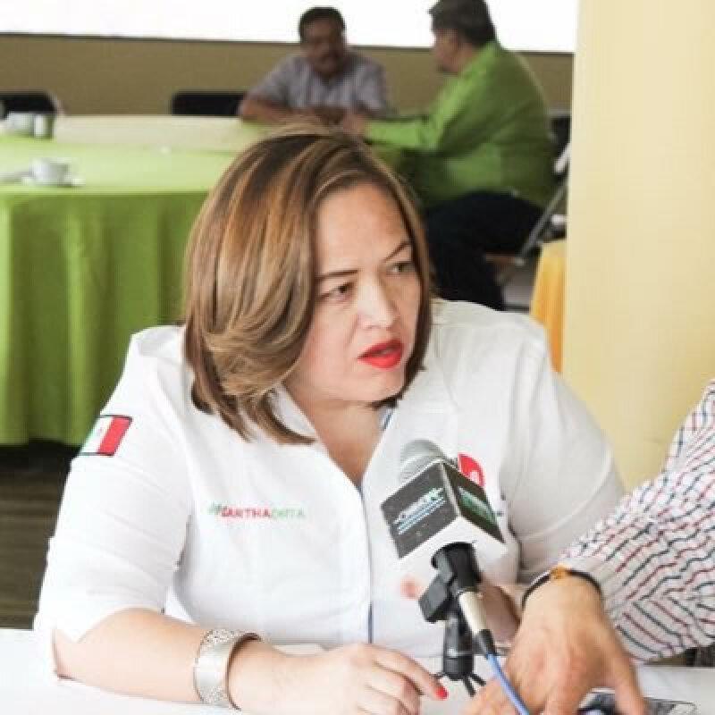 Martha Orta Rodríguez, diputada local priista en San Luis Potosí, busca impulsar una iniciativa que penalice el publicar memes, convirtiéndose así en uno.