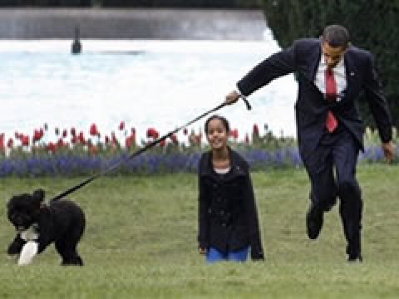 Desde el 4 de noviembre, Barack Obama prometió a sus hijas una mascota (Foto: AP)