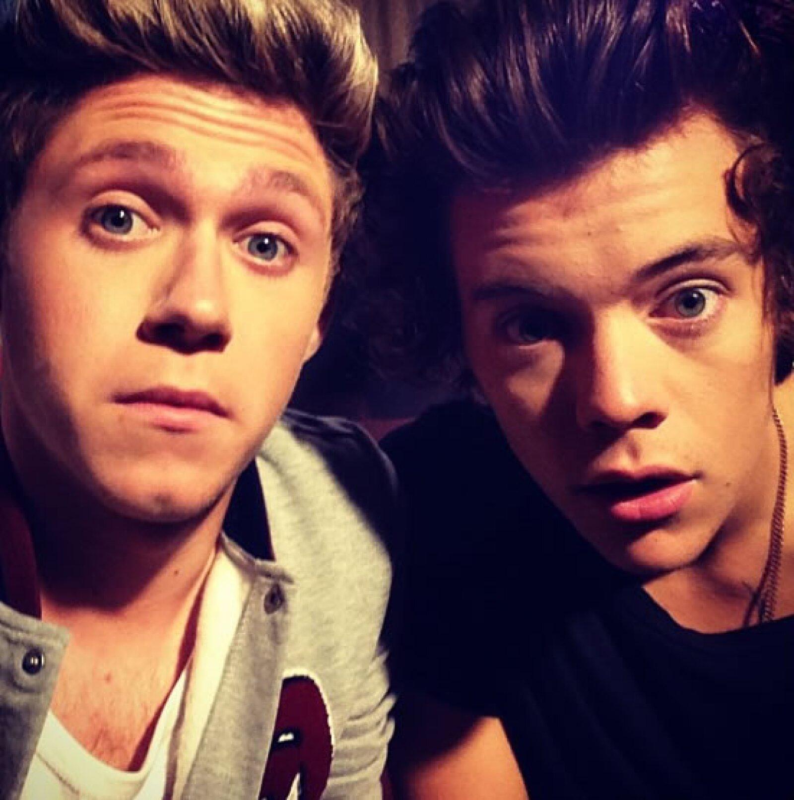 Además de Harry Styles, es uno de los miembros de su grupo más populares. Tiene más de 14 millones de seguidores en Twitter.