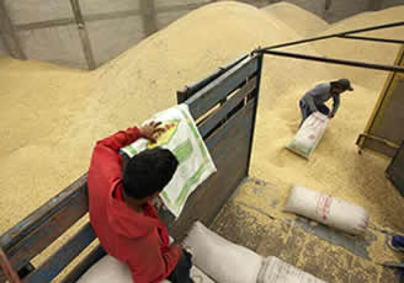 En la actualidad, 10% del maíz que se importa de Estados Unidos es transgénico. (Foto: AP)