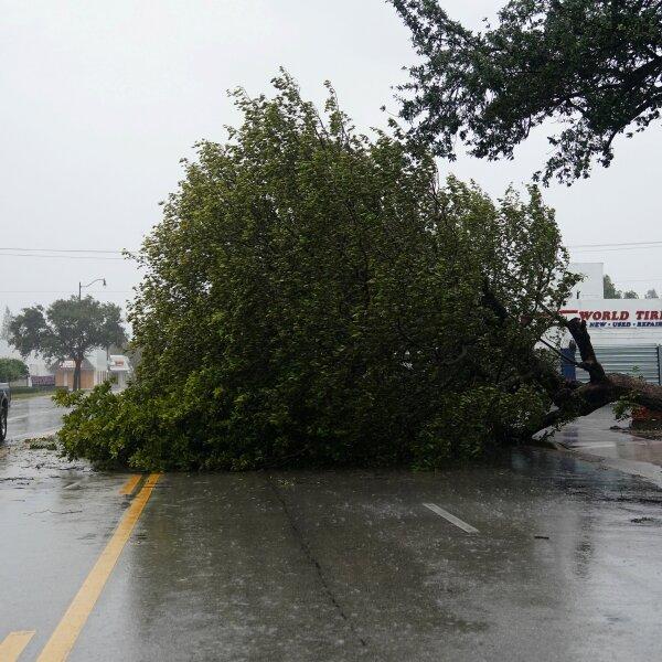 Irma Florida