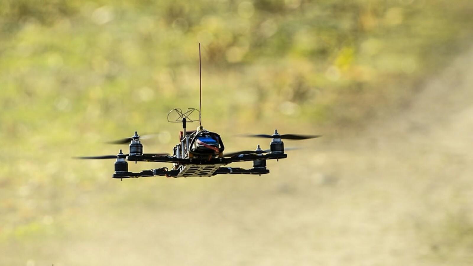 drones bosques usos