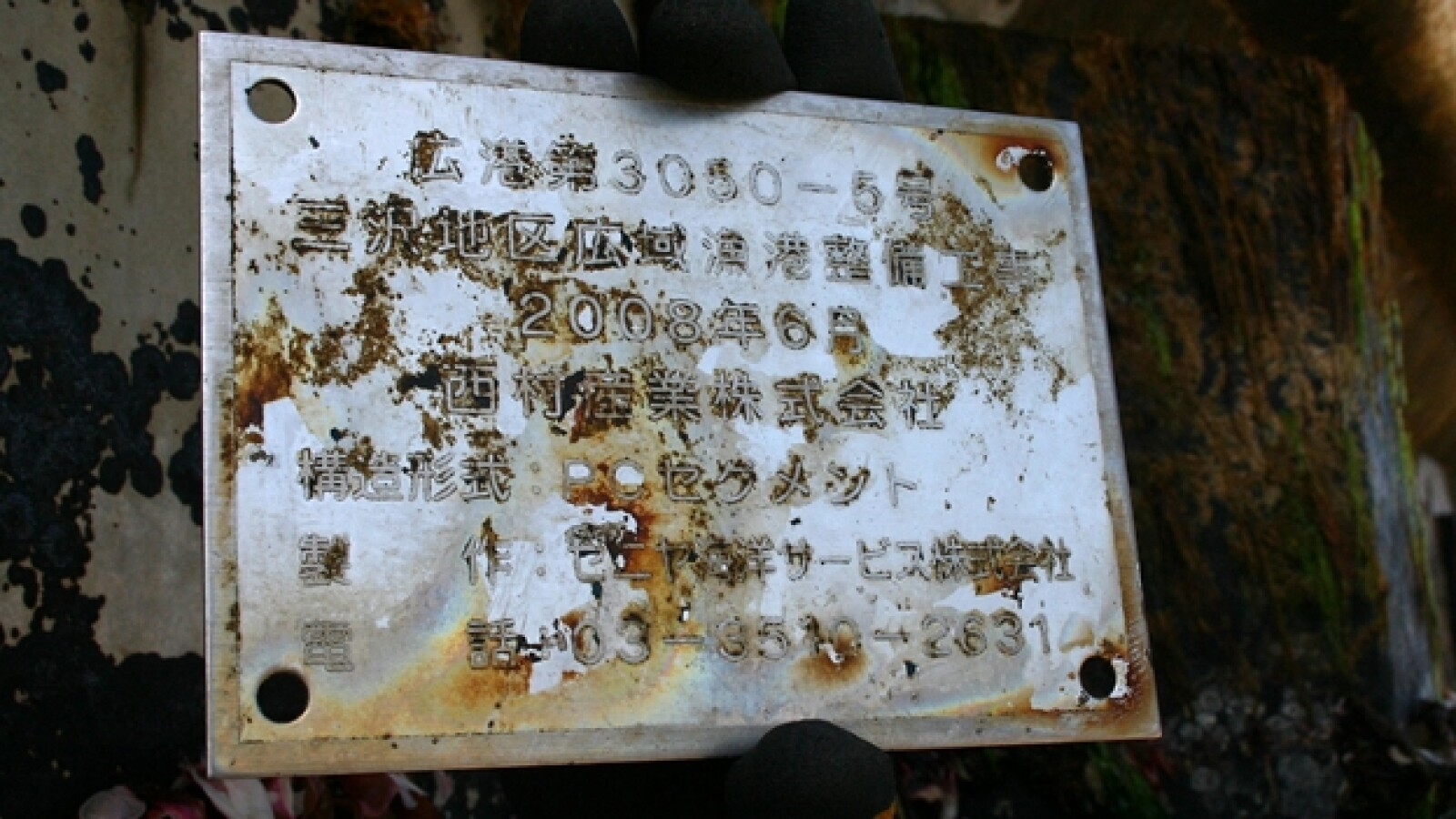 muelle tsunami japon
