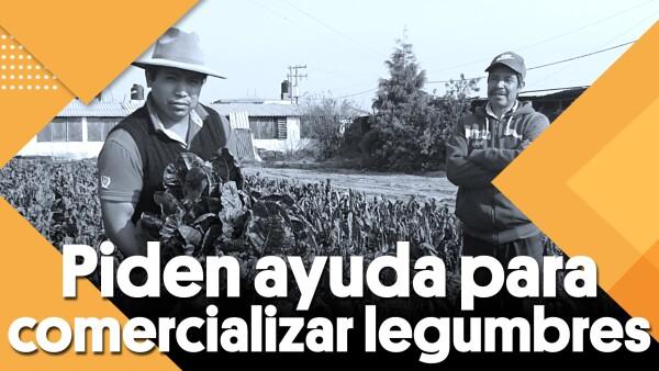 #Clip | Campesinos piden ayuda para comercializar legumbres