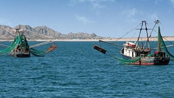 Puerto Pe�asco 2