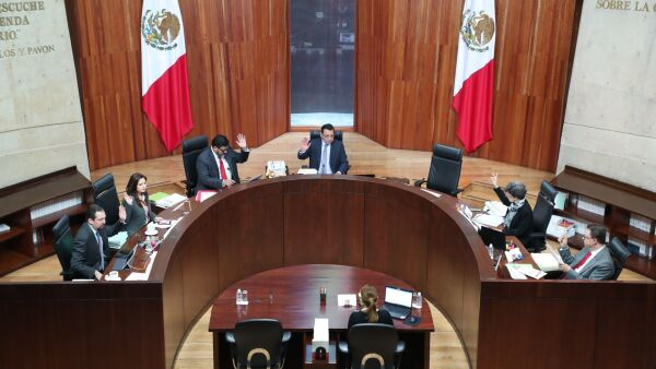 tribunal electoral_morena