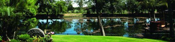 En el rancho habitan en libertad patos, venados y pavos reales, entre otras especies. En el enorme lago hay una amplia variedad de coloridos peces.