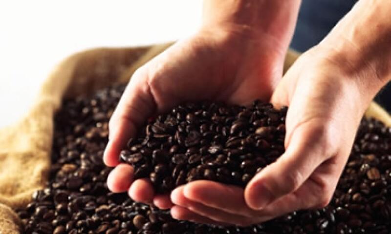 De las variedades básicas robusta y arábica, se desprenden otras subdivisiones de granos de café, de acuerdo con su tamaño, tipo de cultivo y origen. (Foto: Archivo)