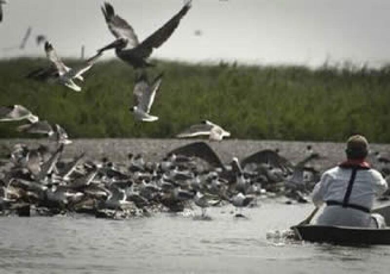 Un pozo de BP estalló en abril, provocando el peor derrame de crudo en Estados Unidos. (Foto: Reuters)