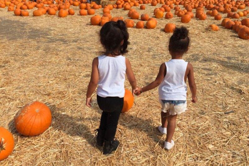 Las pequeñas se aventuraron para buscar la calabaza perfecta.