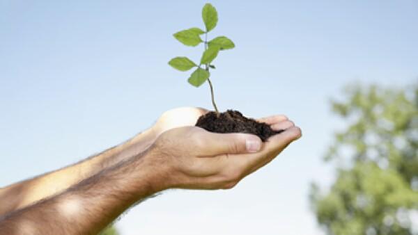 Los bancos y fondos de inversión  están buscando proyectos sustentables, que sean rentables en el largo plazo. (Foto: Getty Images)