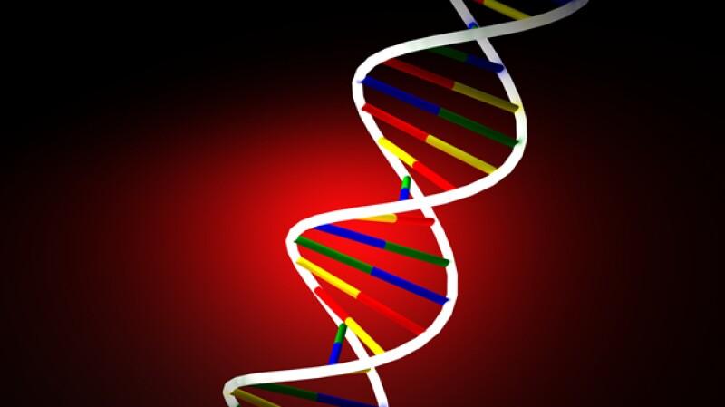 Los científicos dirigidos por Venter lograron secuencias ADN artificial
