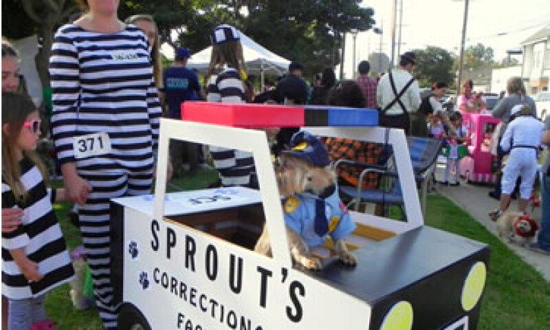 Ciudades como Long Beach tienen su desfile con mascotas. (Foto: EFE)