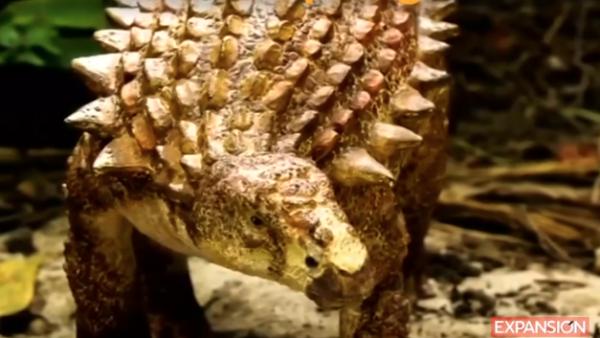 Hallan-fósiles-nuevo-dinosaurio-México-REUTERS