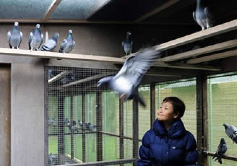 Yi Minna, jefa de operaciones de PiPa, organiza la subasta de las aves. (Foto: AP)
