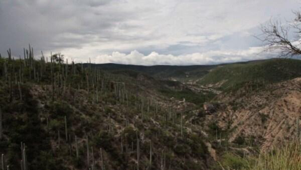 Sitios-Colombia-México-patrimonio-AFP