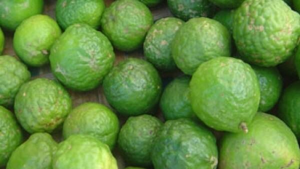 LOG-LimonPersa