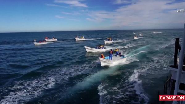 Un barco que protege vaquita marina denuncia emboscada marítima en México