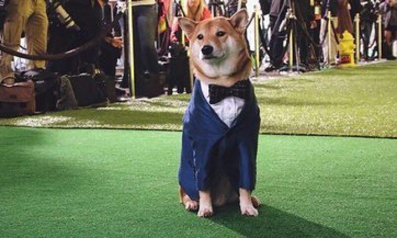 Menswear Dog comenzó con una serie de fotos en Tumblr. (Foto: Facebook/MenswearDog )