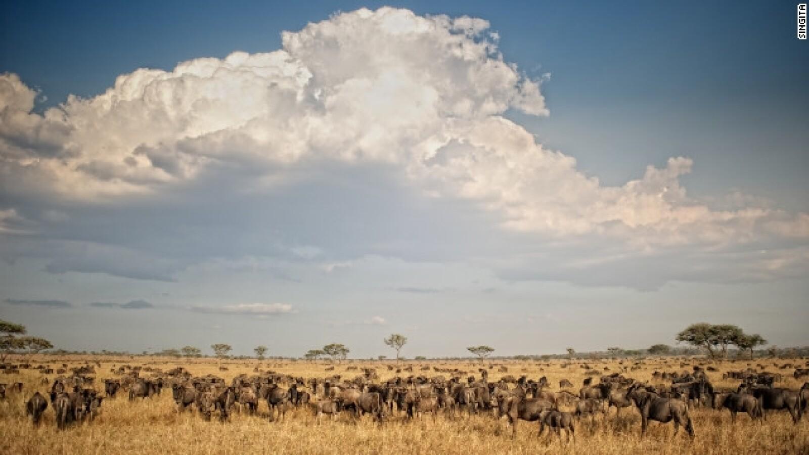 gran migración africa oriental