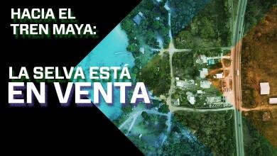 Hacia el Tren Maya: la selva está en venta