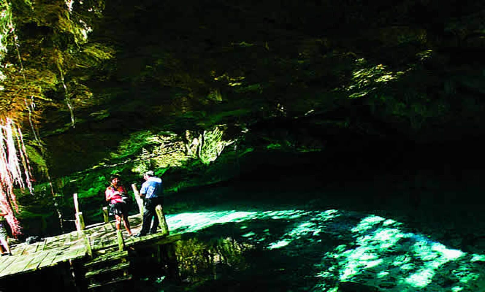 Actualmente, en la península de Yucatán, hay alrededor de 3,000 cenotes, de los cuales sólo la mitad han sido registrados; el resto permanece inexplorado.