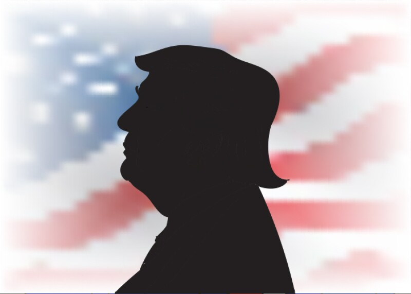 Trump arte