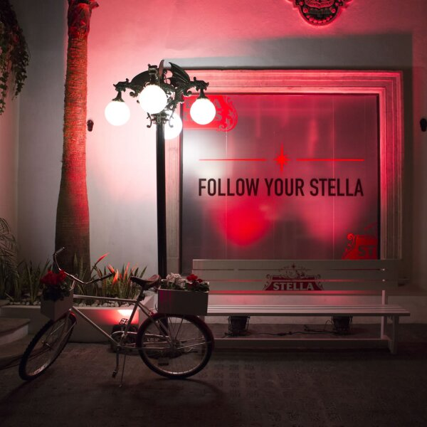 Follow your Stella