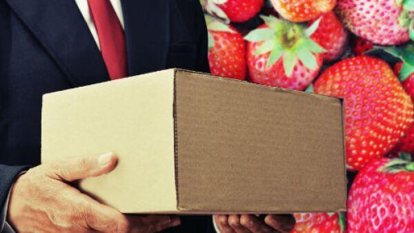 exportaciones de fresas