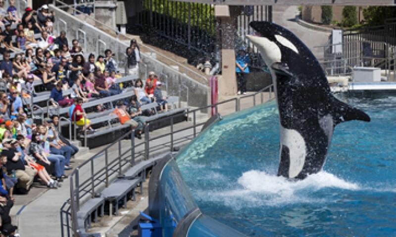 SeaWorld responde a su crisis de relaciones públicas con una campaña. (Foto: Reuters)