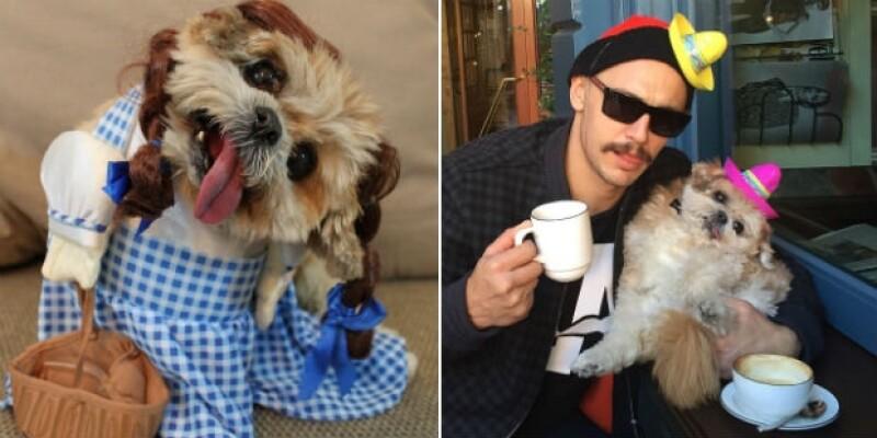 James Franco creyó que nunca conocería a alguien como Marnie The Dog y ahora son grandes amigos.