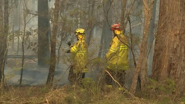 Sidney se prepara para una situación catastrófica frente a los incendios