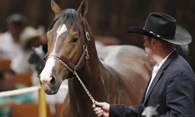 Junto con José Treviño Morales, fueron acusados también los entrenadores de los caballos. (Foto: AP)